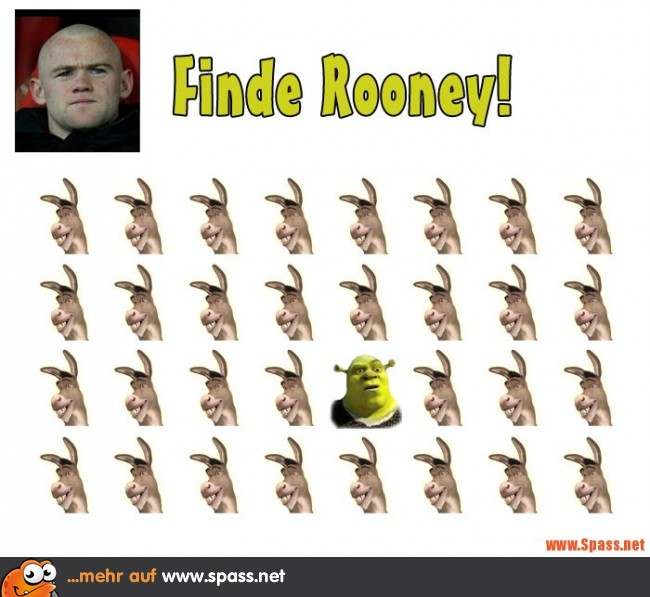 finde-rooney