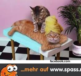 Tantra massage waiblingen