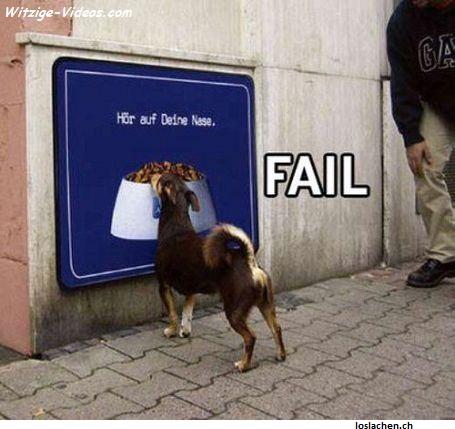 Hund vor Plakat mit Hundefutter