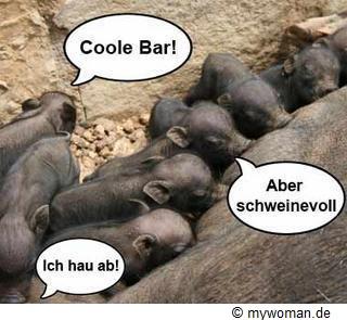 Wildschweinbabys beim Trinken