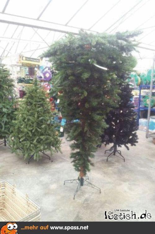 Tannenbaum Lustig.Weihnachten Steht Kopf Lustige Bilder Auf Spass Net
