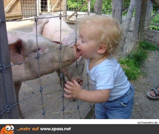 Schwein Gehabt Lustige Bilder Auf Spassnet