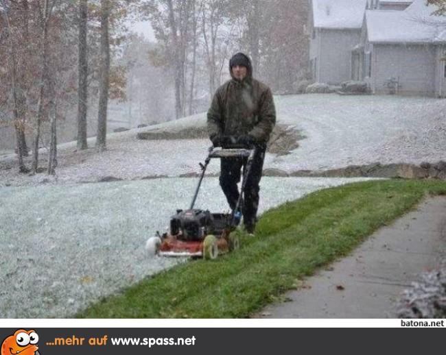 Im Winter Wachst Das Gras Doch Auch Oder Lustige Bilder Auf