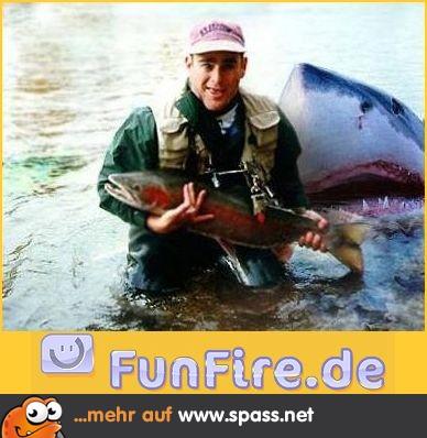 Fischer Hai