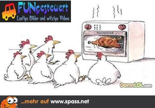 Horrormovie für Hühner   Lustige Bilder auf Spass.net