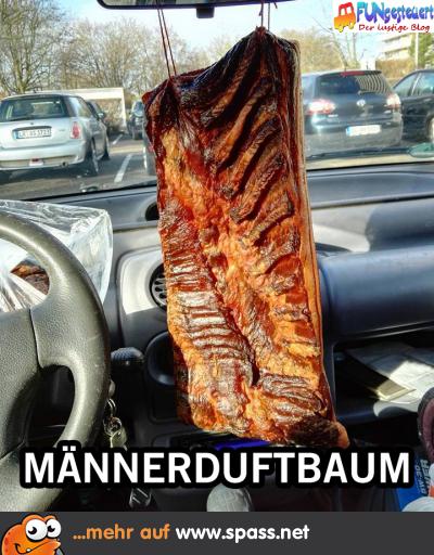Duft im Auto
