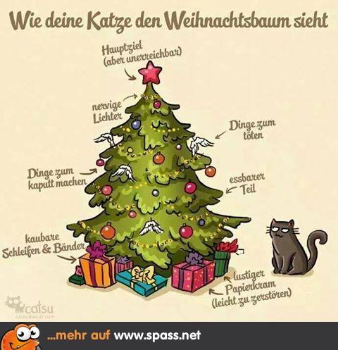 weihnachtsbaum aus katzensicht lustige bilder auf. Black Bedroom Furniture Sets. Home Design Ideas