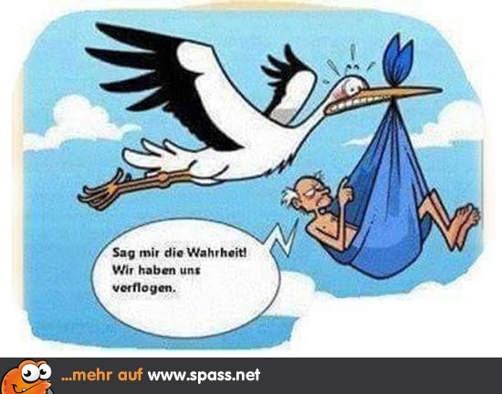Fliesenleger lustig  Cartoons - Lustige Bilder auf Spass.net