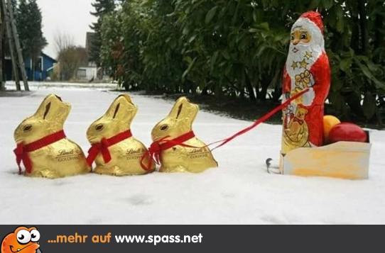 Ostern Im Schnee Lustige Bilder Auf Spass Net