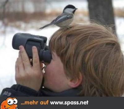 Kinder Lustige Bilder Auf Spass Net